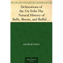 Delineations of the Ox Tribe The Natural History of Bulls, Bisons, and Buffaloes. Exhibiting all the Known Species and the More Remarkable Varieties of the Genus Bos. (English Edition)