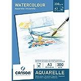 Canson 200005790 – 水彩纸 A3, 300克/平方米, 10张, 白色
