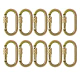 Fusion Climb Ovatti 钢螺丝锁椭圆形登山扣 10 件装