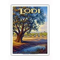 Pacifica 岛艺术 - Lodi Wineries - Valley Oak (Quercus lobata) - Central Valley AVA Vineyards - 加利福尼亚葡萄*国家艺术 Kerne Erickson 出品 - 高级艺术印刷品 9 x 12 in PRTACS155