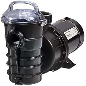Pentair Dynamo AG 泳池泵 1 HP w/电源线和开关 340197 1HP 340197