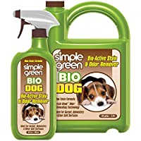Bio Dog 活性污渍*剂 - 地毯、地毯和织物去污剂 - 消除尿液异味(907 克喷雾和 1 加仑装)(2 瓶装)