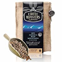 COFFEE ROASTERS 诺斯特 牙买加蓝山咖啡豆 227g(牙买加进口)