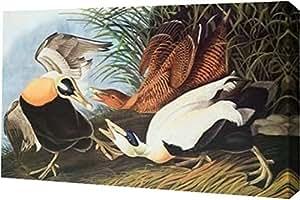 """PrintArt 墙壁艺术印刷品 30"""" x 19"""" GW-POD-64-197954-30x19"""