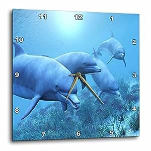3dRose dpp_55192_2 海豚在水下玩耍挂钟,13 x 13 英寸