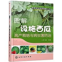 图解设施西瓜高产栽培与病虫害防治 (果树栽培修剪图解丛书)
