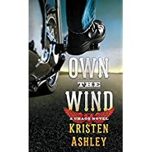 Own the Wind: A Chaos Novel (English Edition)