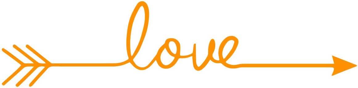 """大容量激励和鼓舞人心艺术贴花/熔融 13.97 cm x 57.91 cm 墙饰 乙烯基贴纸 橙色 5.5"""" by 22.8"""" Love Arrow-Parent"""