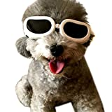 Alfie 宠物 Petoga Couture 出品 - 适用于狗狗和猫咪的 Larry 太阳镜 白色 XS