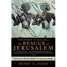 The Rescue of Jerusalem: The Alliance Between Hebrews and Africans in 701 BC (English Edition)