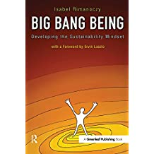 Big Bang Being: Developing the Sustainability Mindset (English Edition)
