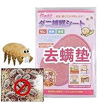 去螨贴 螨虫贴 去螨虫吸螨贴 杀螨虫 家用床上沙发除螨贴 床上用品 日本进口药粉 (10片装)