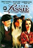 灵犬莱西(DVD)