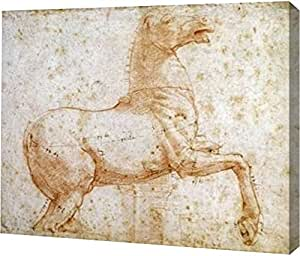 "PrintArt GW-POD-64-267235-20x16""Study of The Quirinal Marble Horses"" Raphael Gallery Wrapped Giclee 油画艺术印刷品 16"" x 13"" GW-POD-64-267235-16x13"