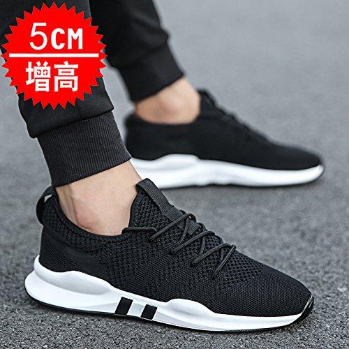 FGHGF夏の韓国のトレンドメンズキャンバスシューズメンズネットシューズ学生の靴通気性のあるスニーカーワイルドWE005ブラック(プラスパッド)42