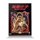 龙拳小子(DVD9)
