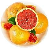 悠汇园 【买6个送2个】以色列进口西柚6个装 单果约280-350g 进口柚子