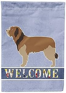 Caroline's Treasures BB8295GF 加泰兰牧羊犬欢迎花园旗帜,多色