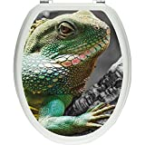 Pixxp/3D WCS 4782 32x40 大号洋葱厕盖贴纸,WC,马桶盖,Gläzendes 材质 黑色/白色,40 x 32 厘米
