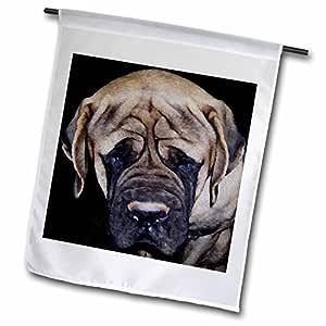 Rebecca ANNE GRANT 摄影设计艺术 canines Dogs mastiffs–mastiff 油画–旗帜 12 x 18 inch Garden Flag