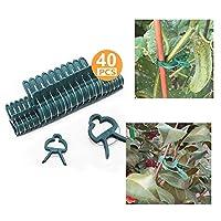 植物支撑夹,40 个可重复使用植物夹,2 种尺寸可调节花园植物夹,支持攀爬乙烯、茎、茎 - 与竹桩、番茄笼、格子网配合使用