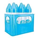 dBb Remond Rack with PP 婴儿奶瓶,9 盎司,蓝色,6 支装