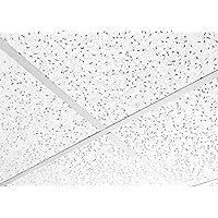 悬挂式天花板 FINE ND FISSURED 板块 595 x 595 600x600 16 块方块,方形边缘
