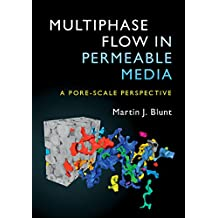Multiphase Flow in Permeable Media: A Pore-Scale Perspective (English Edition)