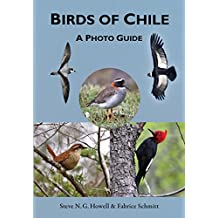 Birds of Chile: A Photo Guide (English Edition)