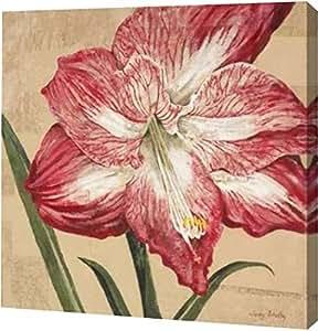 "PrintArt"" Blooming Wonder I 来自 Judy Shelby 画廊装裱艺术微喷油画艺术印刷品,30.48 cm x 30.48 cm"