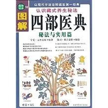 图解四部医典:秘法与实用篇(以现代手法诠释藏医第一经典)