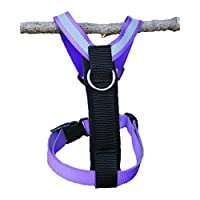 FinNero 宠物产品,芬兰 - 狗狗防拉式SALON *带,尺寸:XS 至 L,前置*带
