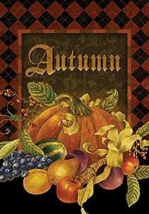 Toland Home Garden Autumn Argyle 28 x 40 Inch Decorative Fall Pumpkin Fruit Harvest House Flag