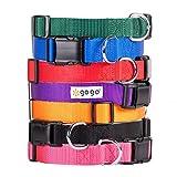 GoGo Pet Products Comfy Nylon 3/4-Inch Adjustable Pet Collar, Medium, Purple