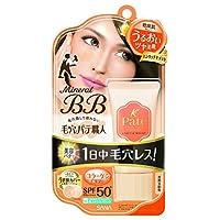 毛孔专家 矿物BB霜 温柔保湿 自然肤色 30g