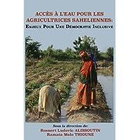 Acces A L'Eau Pour Les Agricultrices Saheliennes. Enjeux Pour Une Democratie Inclusive