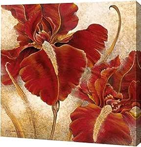 "PrintArt GW-POD-25-11966-20x20""Red Iris"" 来自 Richard Henson 画廊装裱艺术微喷油画艺术印刷品,50.80 cm x 50.80 cm"