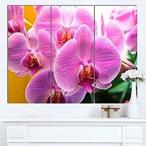 """Designart MT12500-271 美丽的紫色兰花花 - 大花金属墙壁艺术,紫色,121.92x71.12 紫色 36x28"""" - 3 Panels MT12500-3P"""