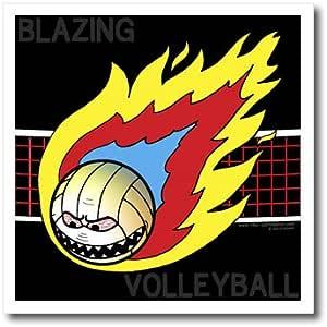 Rich diesslins 有趣通用卡通–blazing 愤怒 volleyball CROSSING THE NET–熨烫热转印