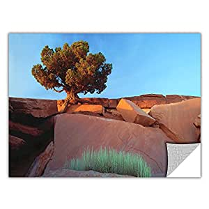 ArtWall Appealz Dean Uhlinger 'Dead Horse Point' Removable Graphic Wall Art, 14 by 18-Inch