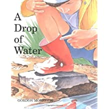 A Drop of Water (English Edition)