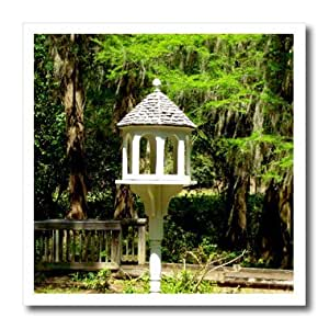 3dRose ht_155296_3 Edisto Memorial Gardens 的 Victorian 影响鸟类喂食器热烫转印,25.4 x 25.4 厘米