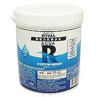 ROVAL水性罗巴鲁冷镀锌涂料1KG 水性有机富锌涂料 水性重防腐涂料