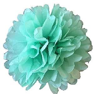 """10 件装纸质花球球球球球派对装饰室内室外 15.24cm 20.32cm 25.40cm 30.48cm 35.56cm 薄荷绿 12"""" NA"""