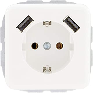 REV Ritter 0216130106 REV Vario 2 倍 USB 组合装 2.1 安培 白色 插座