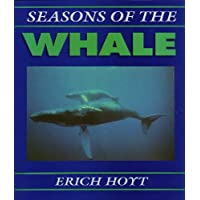 Seasons of the Whale: Riding the Currents of the North Atlantic
