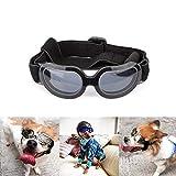 Biowow 小型宠物太阳镜,时尚有趣的宠物/狗小狗紫外线护目镜太阳镜防水太阳镜,适用于猫和小型犬 黑色