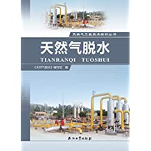 天然气脱水 (天然气工程技术培训丛书)