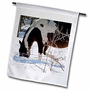 krista FUNK Creations 野生 HORSES near 阿拉斯加 HIGHWAY–A 美丽马 digs IN THE SNOW 适用于食品 ALONG THE 阿拉斯加 HIGHWAY–旗帜 12 x 18 inch Garden Flag