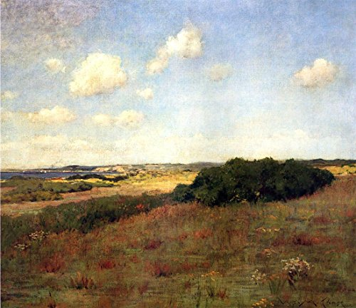 williamchase_\'sunlight and shadow, shinnecock hills\' by william merritt chase